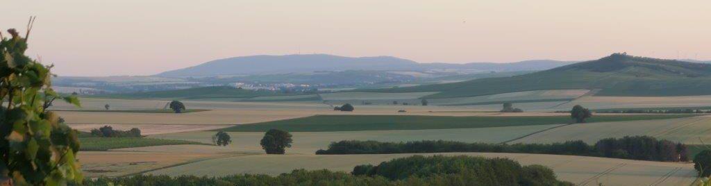 Rheinhessen Pur